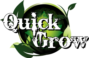 QUICK GROW CONSULTING